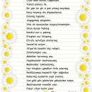 Bediüzzaman Şiiri