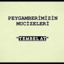 Peygamberimizin Mucizeleri (sav): Tembel At