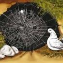 Peygamberimizin Mucizeleri - Mağaradaki Örümcek