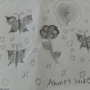 Kelebekler ve Çiçekler